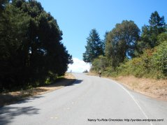climb up haskins hill-pescadero creek rd to summit