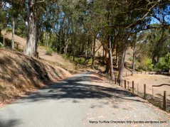 lobitos creek rd