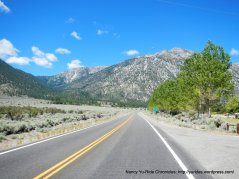 Foothill Rd/NV-206