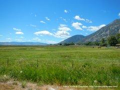 Carson Valley meadows