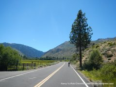 Carson Valley Rd