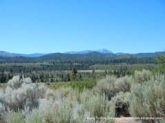 Carson valley