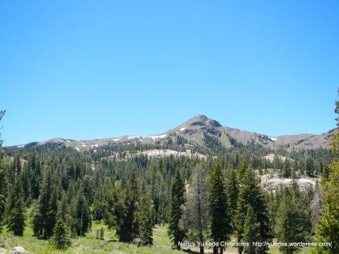 alpine peak-forest