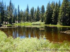 valley pond
