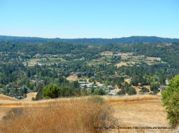 stunning views-Moraga valley