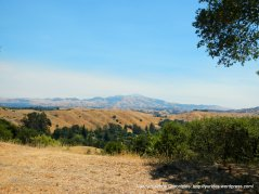 view of Mt Diablo