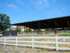 horse training arena