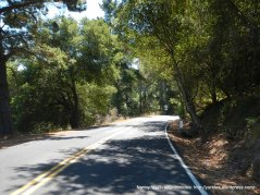 descend wildcat canyon rd