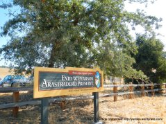 Pearson-Arastradero Preserve