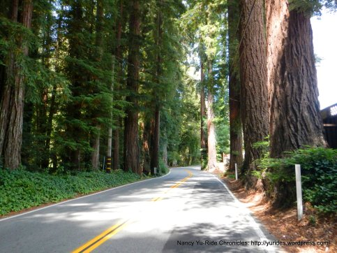ca-236/big basin way