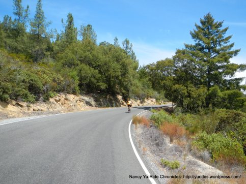 big basin way-outer ridge