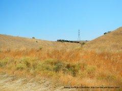 golden hills