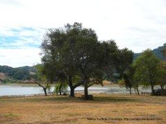 stafford lake park