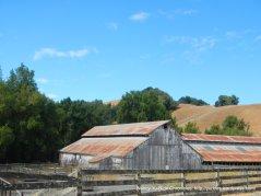 novato blvd ranch