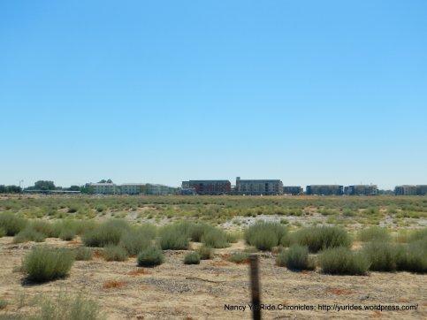 davis housing
