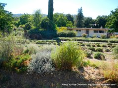 pleasants valley herb farm