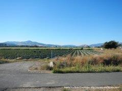 valley farm land