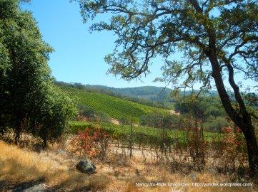 howell mtn-vineyards