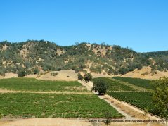 lower chiles valley
