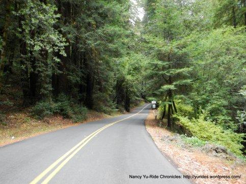 lower pinehurst rd
