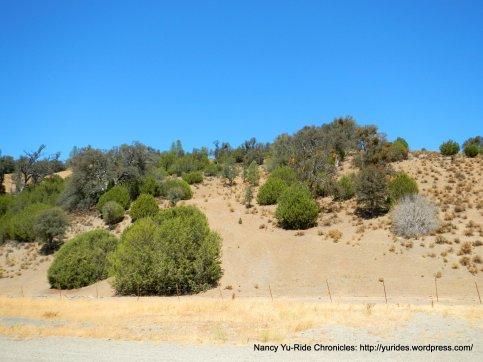 mines landscape