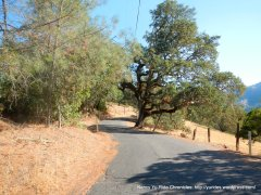 old lawley toll rd