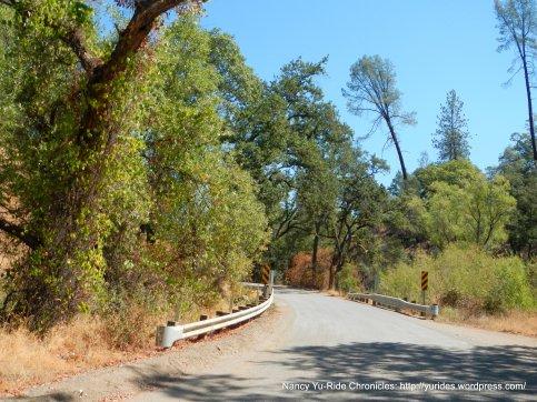 packed gravel/dirt road-harbin creek xing