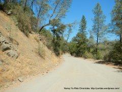 packed gravel/dirt road