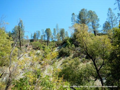 big canyon landscape