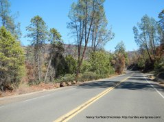 butts canyon rd