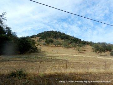 yountville hills