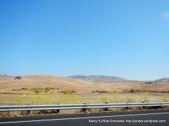 nicasio hills