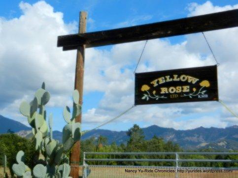 yellow rose ranch