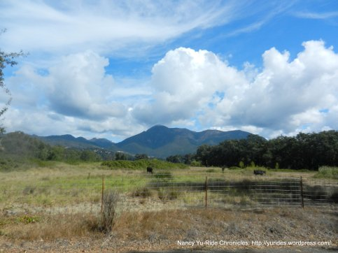 franz valley rd-view of mt st helena