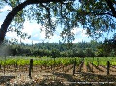 franz valley vineyards