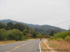 bear valley rd