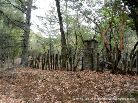 st helena rd woods