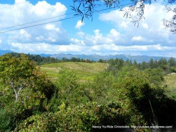 schweiger vineyards-summit views
