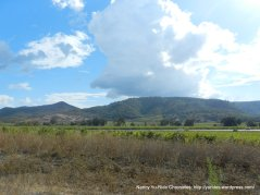 napa valley