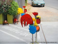 colorful rooster