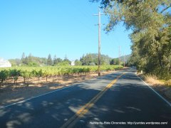 CA-128 E/rutherford ave