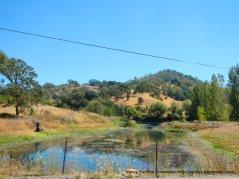 vvalley ranch pond