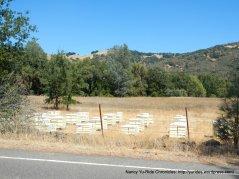 valley bee farm