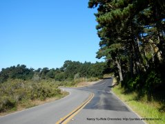 to pt reyes national seashore