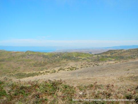 coastla landscape