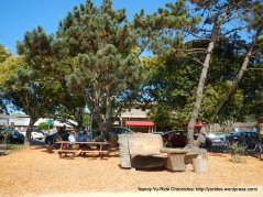 pt reyes town commons