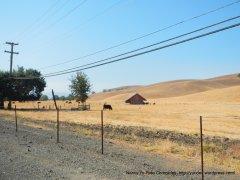 camino tassajara ranchlands