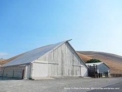 highland barn