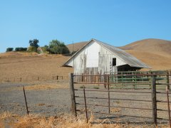 collier canyon cattle barn