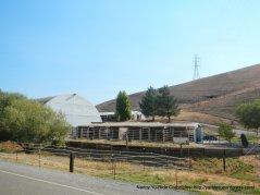 horse facility